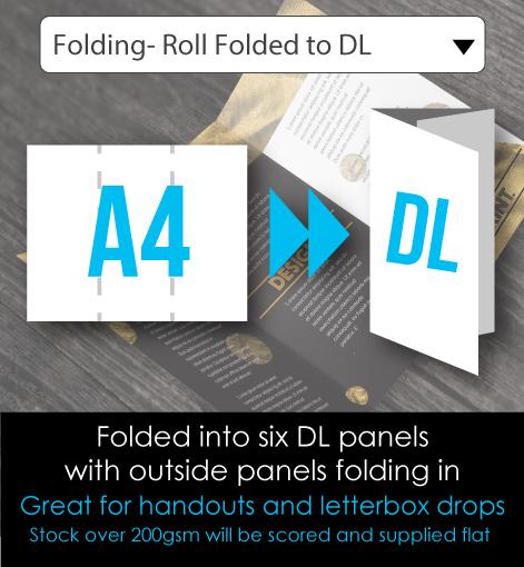 DL Brochures Folded