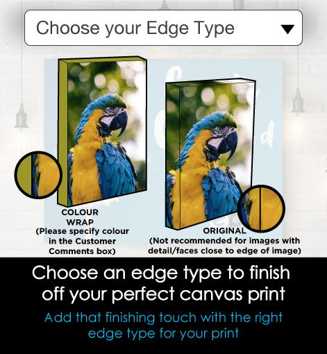https://shop.eprintonline.com.au/images/products_gallery_images/CANVAS-SCROLL-Edges-0355.jpg