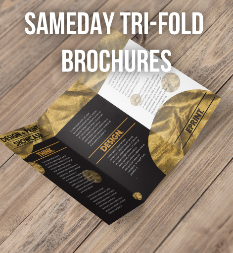 Same Day Brochures DL Tri Folded